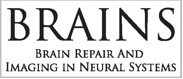 brains unit logo
