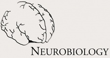 neurobiology logo