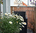 15008590 beautiful house terrace with a lot of flowers
