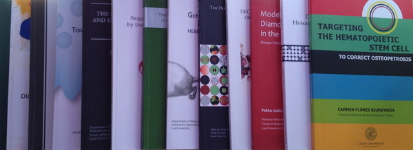 Thesis at lund university