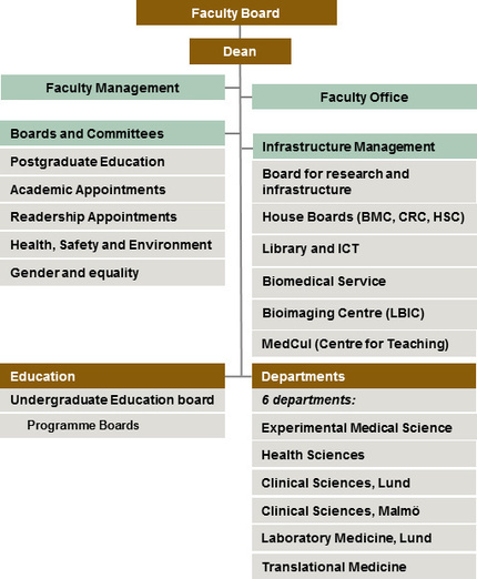 organisation of the faculty of medicine