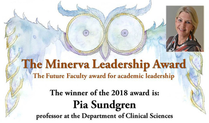 the minerva leadership award 2018 website crop