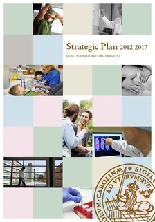 the strategic plan 2012 2017